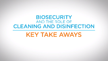 18. Biosecurity and the Role of Cleaning and Disinfection - Key Take-Aways